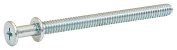 Double Headed Screw