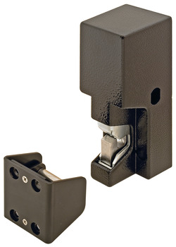 Electric Gate Lock