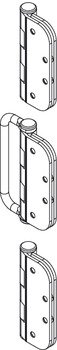 Mortise Intermediate Straight Hinge/Handle Set